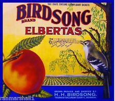Thomaston Upson Georgia Peaches Birdsong Bird Peach Fruit Crate Label Art Print
