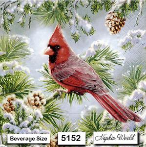 (5152) TWO Individual Paper BEVERAGE / COCKTAIL Decoupage Napkins  CARDINAL BIRD