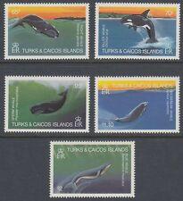 Turks & Caicos 1983 ** Mi.635/39 Wale Whale [sq5856]