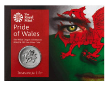 """2016  """"PRIDE OF WALES"""" £20 COIN ROYAL MINT 999 FINE SILVER AUCTION"""