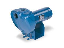 Sta-Rite DS3HF 1.5HP Centrifugal Pump
