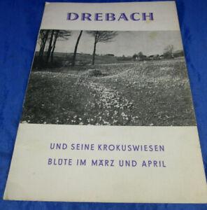 Broschüre Drebach/Erzg. und seine Krokuswiesen Blüte im März/April Rundgang 1966