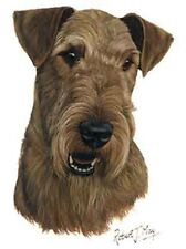 AIREDALE Terrier Dog Robert May Art Greeting Card Set of 6