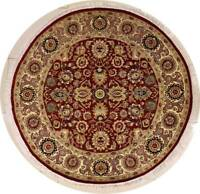 Rugstc 6x6 Senneh Pak Persian Red Area Rug, Hand-Knotted,Floral with Wool Pile