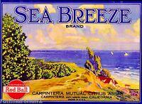 Carpinteria Santa Barbara Sea Breeze Lemon Citrus Fruit Crate Label Art Print