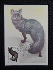 RUSSIA MK TIERE ANIMALS FUCHS FOX MAXIMUMKARTE CARTE MAXIMUM CARD MC CM a7636