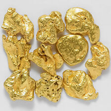 10 Pieces Alaska Natural Gold Nuggets - FREE SHIPPING - (#GTC1)