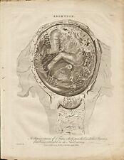 More details for 1795  original print