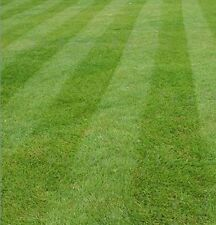 BEST QUALITY GRASS SEED 20KG FOR ORNAMENTAL FINE LAWNS (Defra Reg. 7130)