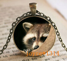 Vintage raccoon Cabochon Bronze Glass Chain Pendant Necklace #476