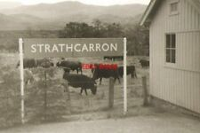 PHOTO  1968 VIEW FROM THE TRAIN STRATHCARRON THE SMALL CONIFERS TO THE LEFT HAVE