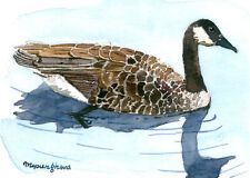 ACEO Limited Edition- Swimming Canada goose, Bird art print, Gift for bird lover