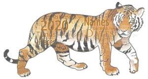 word art picture personalised gift present keepsake tiger Birthday