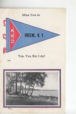 Scenic Blue and Red Printed Pennant Miss You in Greene NY