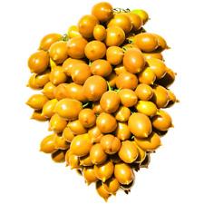 Pomodorino Giallo del Piennolo kg.1,5