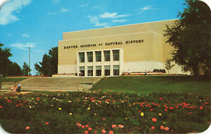 Postcard Denver Museum Of Natural History Denver Colorado