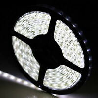 5M SMD 3528 300 led DC 12V Strip Light Lamp Flexible Waterproof Car Day White