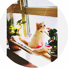 Lavable Window Mount Chat Lit Hamac suspendu Bed Nest Pet repos Sunny Seat