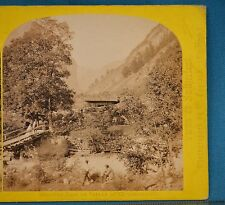 1860s Suisse Stereoview 100 Vallee De Lauterbrunnen Alpine Club William England