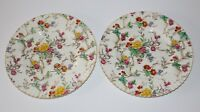 """BOOTHS China PLATES 'Tapestry' 2 DINNER Floral Pattern ENGLAND 10.75"""" Antique"""