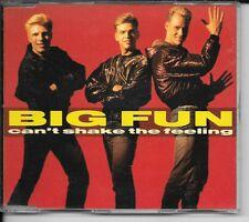 MAXI CD 4 TITRES--BIG FUN--CAN'T SHAKE THE FEELING--1989