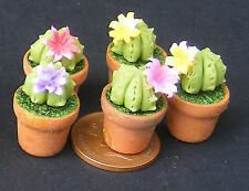 1:12 Scale Single Clay Cactus & Pot Tumdee Dolls House Plant Garden Accessory T8
