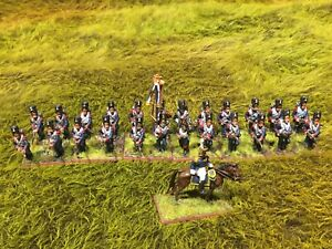 Painted Black Powder Napoleonic French Old Guard Battalion Based For Blackpowder
