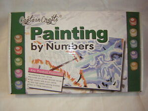CAPTAIN CRAFTS PAINTING BY NUMBERS BRAND NEW IN THE BOX