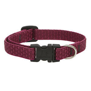 Eco Dog Collar, Adjustable, Berry, 1/2 x 10 to 16-In. -36935