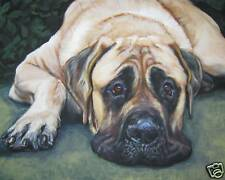American Mastiff CANVAS dog art PRINT of LAShepard painting  LSHEP 8x10