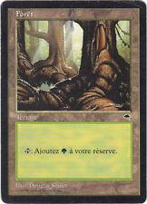 Magic - Forêt