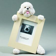 BICHON FRISE ~ PICTURE FRAME #4