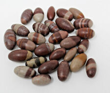 "Lot of 10 Shiva Lingam Stones: Small 0.75"" - 1"" size (Shiva Lingham)"