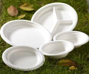 Biodegradable Bagasse Sugarcane White Paper Plates Starter Dinner Dessert