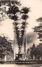 BR51188 Jardin botanico alea das palmeiras Brazil