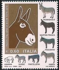 ** Italia 2007: ASINI Razze Italiane [Varietà SELLA AZZURRA] Rarità.