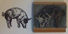Pig rubber stamp by Amazing Arts great detail!