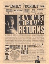 Harry Potter The Daily Prophet He Who Must Not Be Named > Flyer Prop/Replica