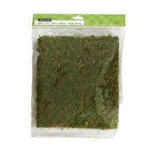 Ashland - Decorative Moss