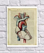 Anatomy Art Print Human Heart Unframed Vintage Anatomy Book Page Collage Art