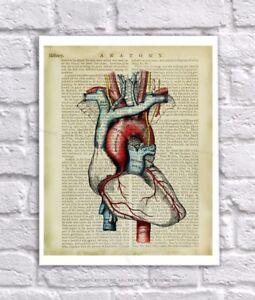 Anatomy Art Print Human Heart Unframed Vintage Anatomy Book Page Collage Art