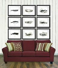 Beach Decor Wall Hanging Set of 9 Whale Poster Prints Bathroom Wall Art