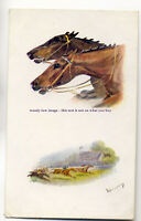 an0577 - Mans Best Friend, Steeplechase, Artist - N.Drummond - Postcard - Tuck's