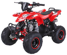 "Quad atv 125cc automatico ruote 8 "" con retromarcia freni a disco 50 km/h cross"