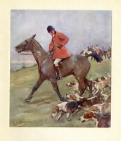 DOGS HOUNDS HUNTERS HORSES FOX HUNTING, RED COAT HUNTSMAN DOGS HUNT FOX, SPORT