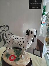 *Rare* Royal Doulton Dalmation Utility Dog Figure Rda7 *Excellent* Nib