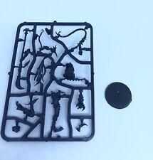 Warhammer 40k Dark Eldar Drukhari Succubus plastic new on sprue