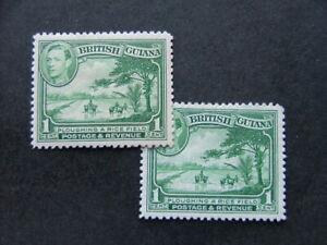 British Guiana KGVI 1938 1c yellow-green SG308 MM