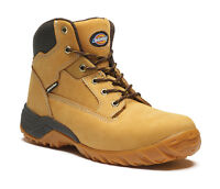 Dickies Graton Safety Mens Nubuck Leather Steel Toe Cap Work Boots UK6-12