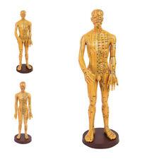 Acupoint & Meridian Human Body Model Small Bronze Men/Female Model Learning